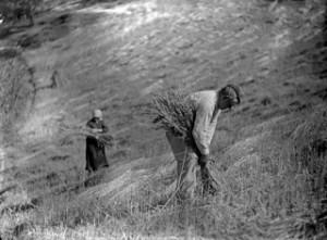 """Fotograma del documental """"Sueños colectivos&quot"""
